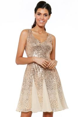 Gold Sequin&Chiffon Mini Dress